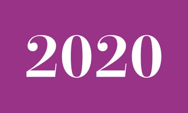 ツインレイ 2020