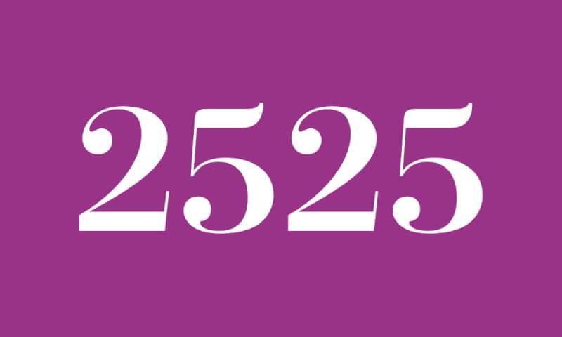 【2525】のエンジェルナンバーの意味・恋愛・ツインソウル『あなたの光の未来を強く信じてください』